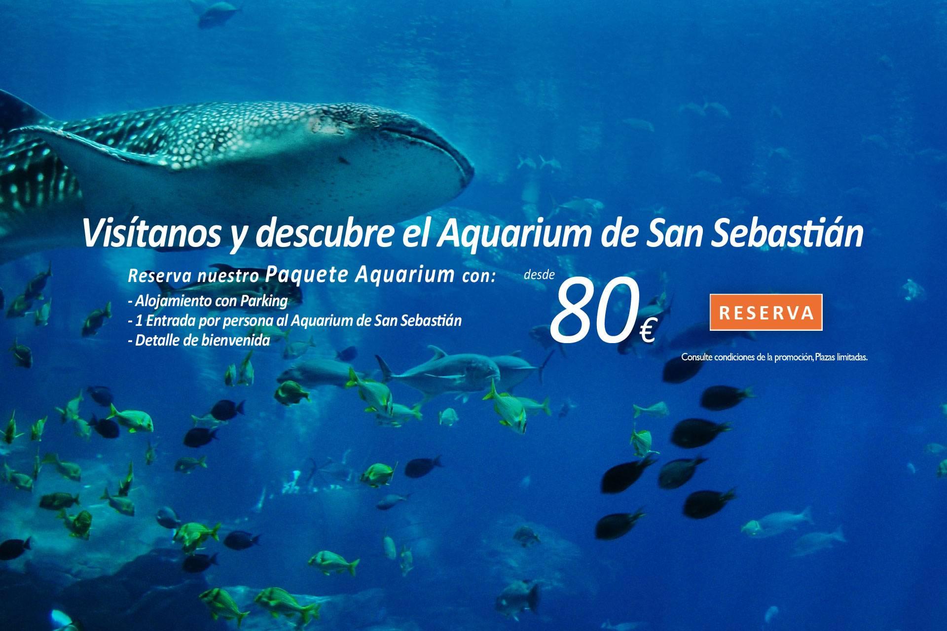 Hotel con parking y gimnasio en san sebastian zenit san - Aquarium donosti precio ...